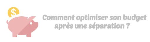 optimisation budget separation
